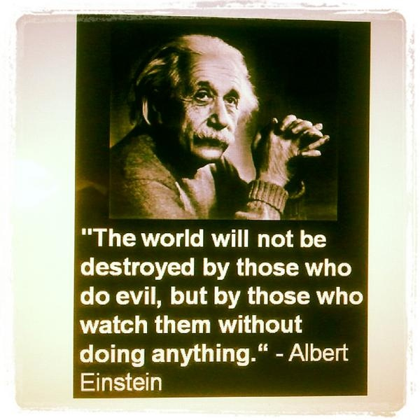 The world will not be destroyed by those who do evil, but by those who watch them without doing anything. ~ Albert Einstein: Dust Jackets, Truths, Albert Einstein Quotes, Albert Einstein, People, Book Jackets, The World, Taking Action,  Dust Wrappers