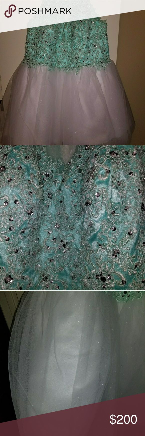 Plus size prom/quince dress Tiffany blue and white, high neck, lacy detailing with sequins. Hand made and worn once! Dresses Prom