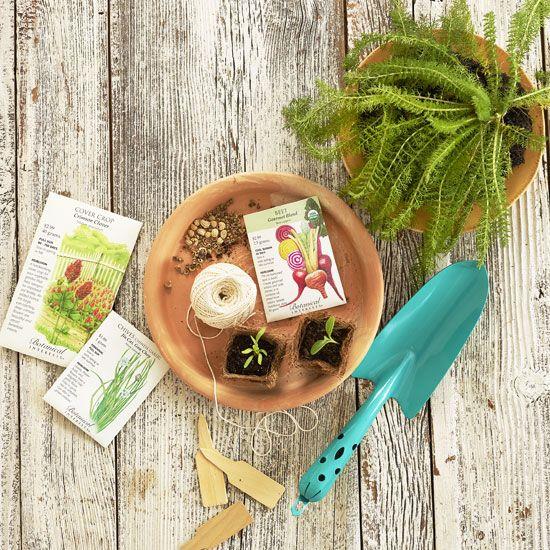 Where To Buy Organic, Non GMO Heirloom Seeds: 5 Companies   Gardening