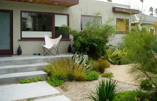 Drought Tolerant Garden Lawn Garden Pinterest