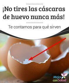 ¡No tires las cáscaras de huevo nunca más! Te contamos para qué sirven  Es muy probable que comas uno o varios huevos durante la semana. Este delicioso alimento es muy versátil y se puede tomar en el desayuno o incluido en otras recetas para disfrutar en familia.