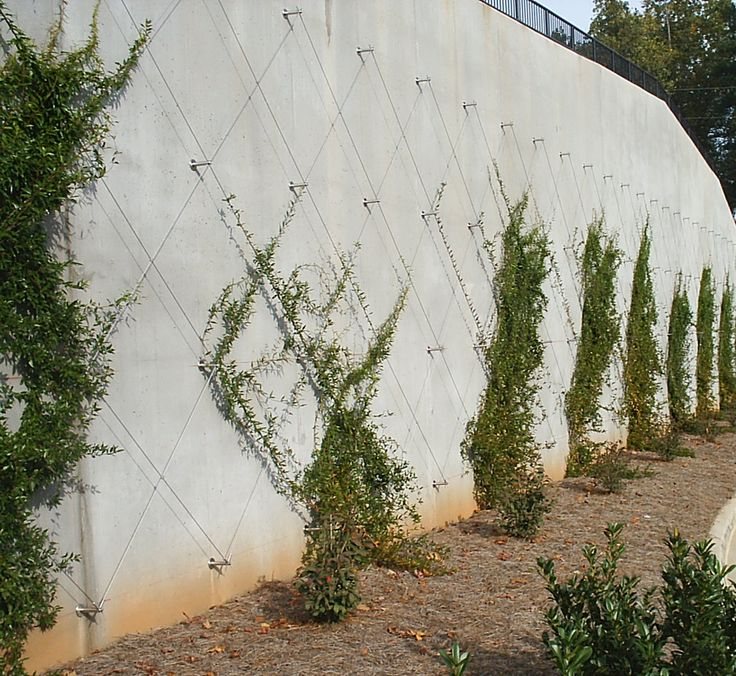 1000 images about library on pinterest green walls for Green wall system