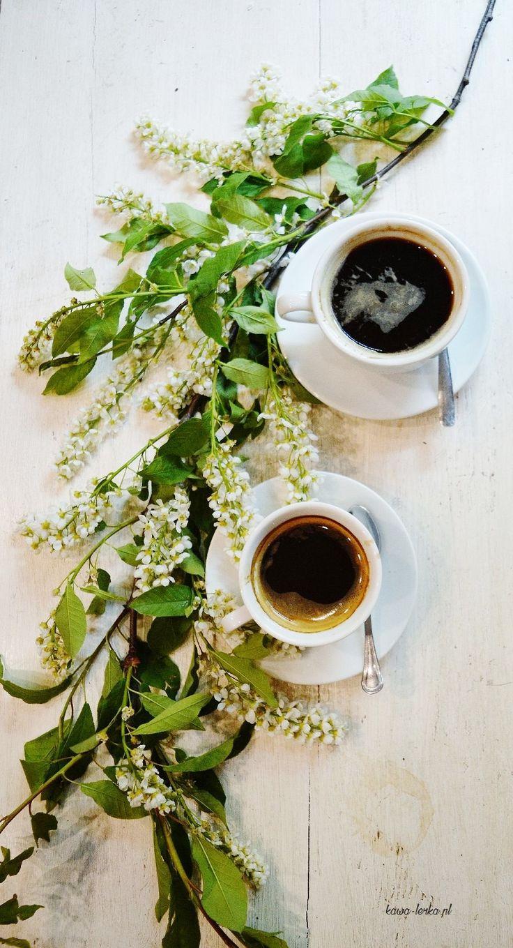 Spring black coffee in Kraków Cafe - KawaLerka. Photography