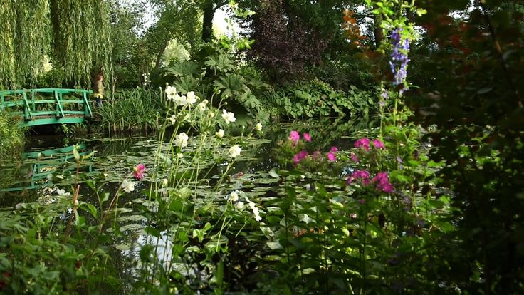 A visit to Claude Monet's garden at Giverny