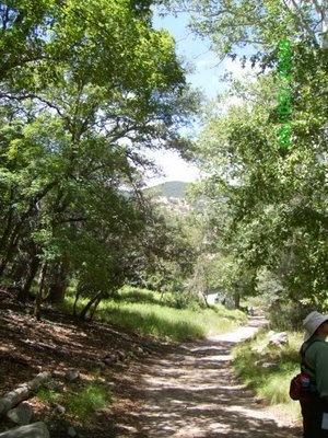 34 best sierra Vista community images on Pinterest | Sierra vista ...