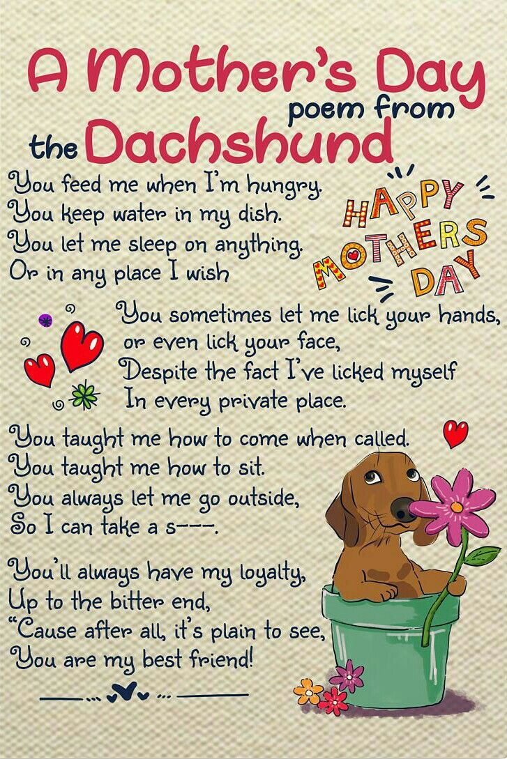 Mother S Day Dachshund Poem From Belks Healey Bailey Roller