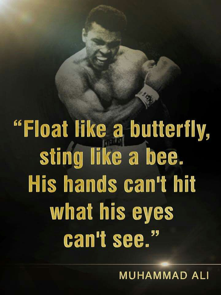 muhammad ali stinging like a bee Sting like a bee is a valuable, indeed essential, addition to the growing library on ali, offering a broader understanding of the enigma known as 'the greatest' --the washington post a fast-paced account of muhammad ali's struggle as a conscientious draft objector, a flashpoint for a tumultuous era .