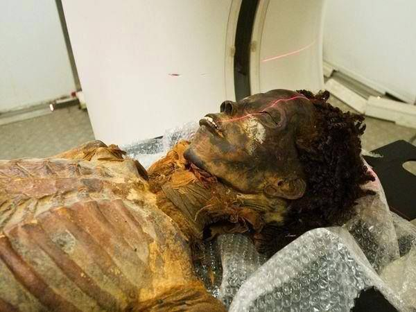 2000 Year Old Mummy Still Has Natural Hair, Real Egyptians were Black Africans