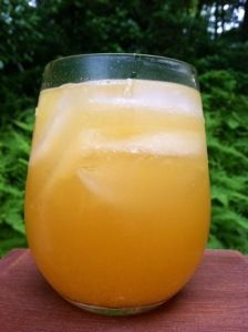 The Citrus Squeeze (the Paleo Diet Drink)