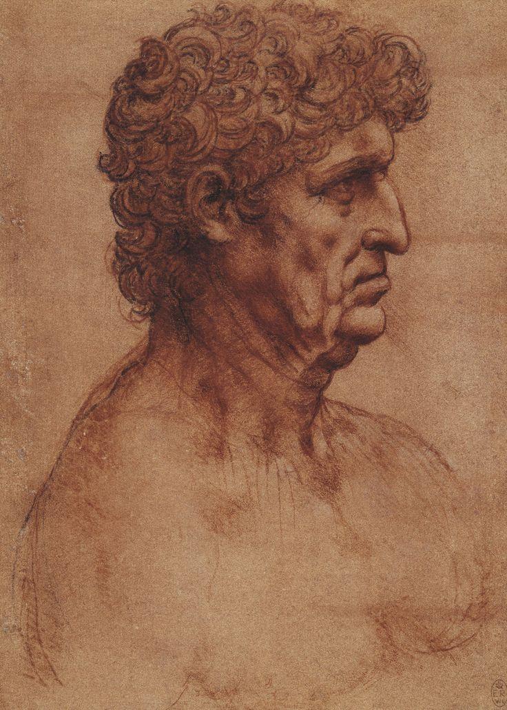 leonardo da vinci the bust of a man in profile master portrait drawings pinterest. Black Bedroom Furniture Sets. Home Design Ideas