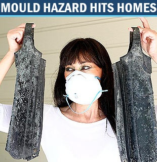 http://youtu.be/yE_ax-Yq5WE Our newest video! What is mould in the house? Is it dangerous to your family's health? Click to find out the BEST way to get rid of mould.