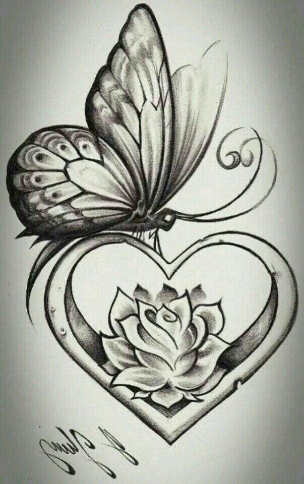 Roses And Butterflies Drawings 11 best Butterf...