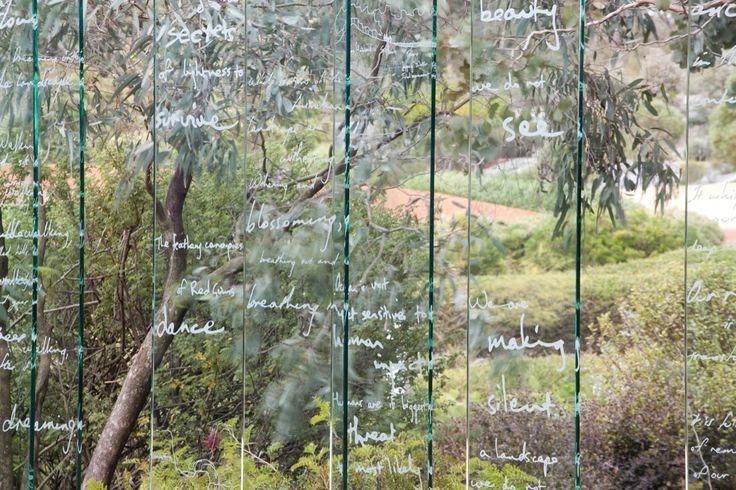 Galeria - O Jardim Australiano / Taylor Cullity Lethlean   Paul Thompson - 131