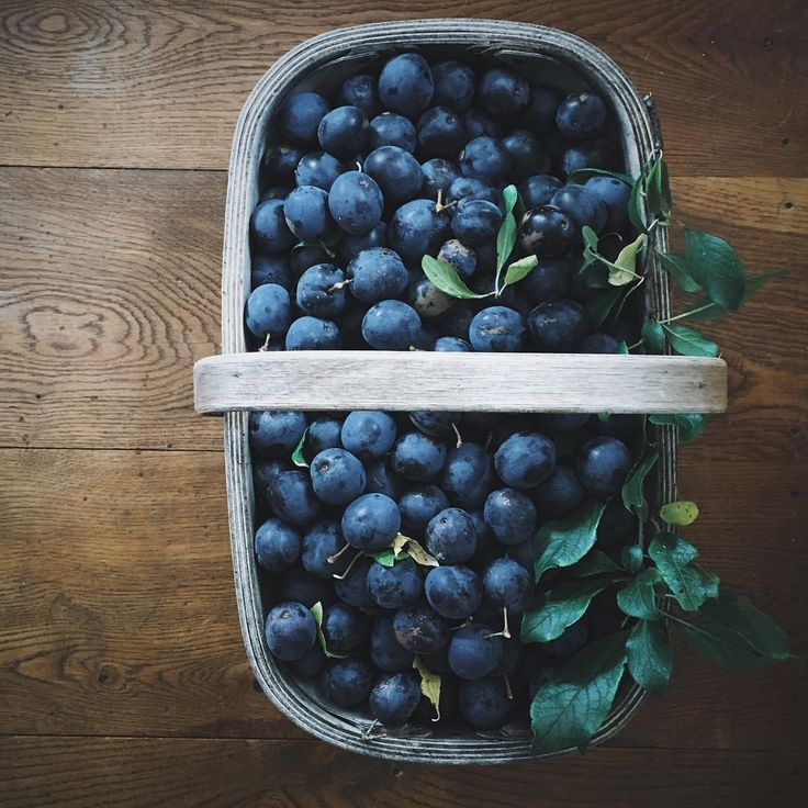 A chilly start to yesterday soon turned into a really warm afternoon. I picked these beautiful damsons (and there are still lots left on the tree) with green insects fluttering around me, chickens at my feet and ducks quacking in the excitement. I'm excited too. It's time to make my favourite jam.