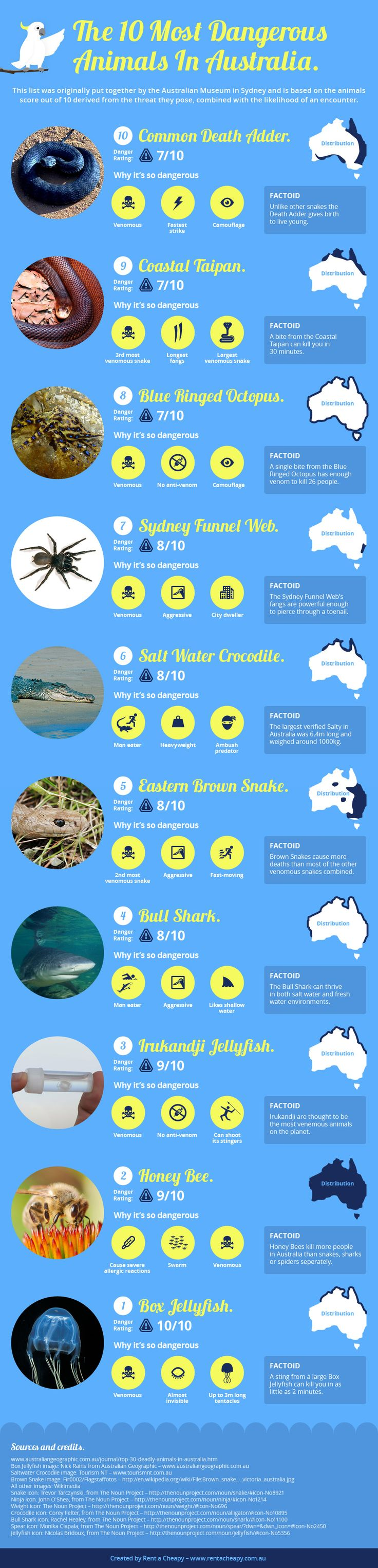 Australia's Top Ten Deadliest Animals. Watch out for these on your travels!