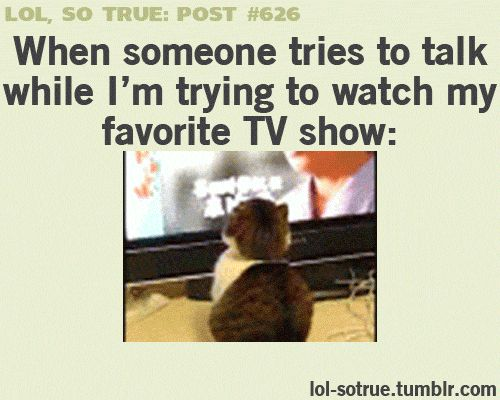Hahahaha! What I really hate is when someone (and you know who you are) gets on their phone and you just have to speak really loud to hear yourself over the TV...