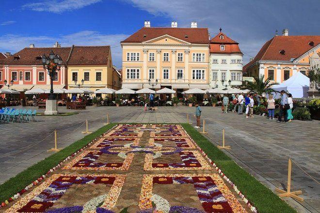 Pillanatképek a Győri Pálinkafesztiválról: virágszőnyeg a Széchenyi téren…