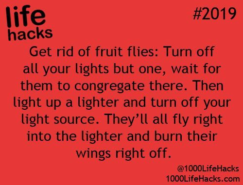 DIY Life Hacks & Crafts : These ingenious life hacks will make you wonder why you never did them before