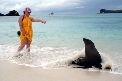 Galapagos - Swimming beside Sea Lions
