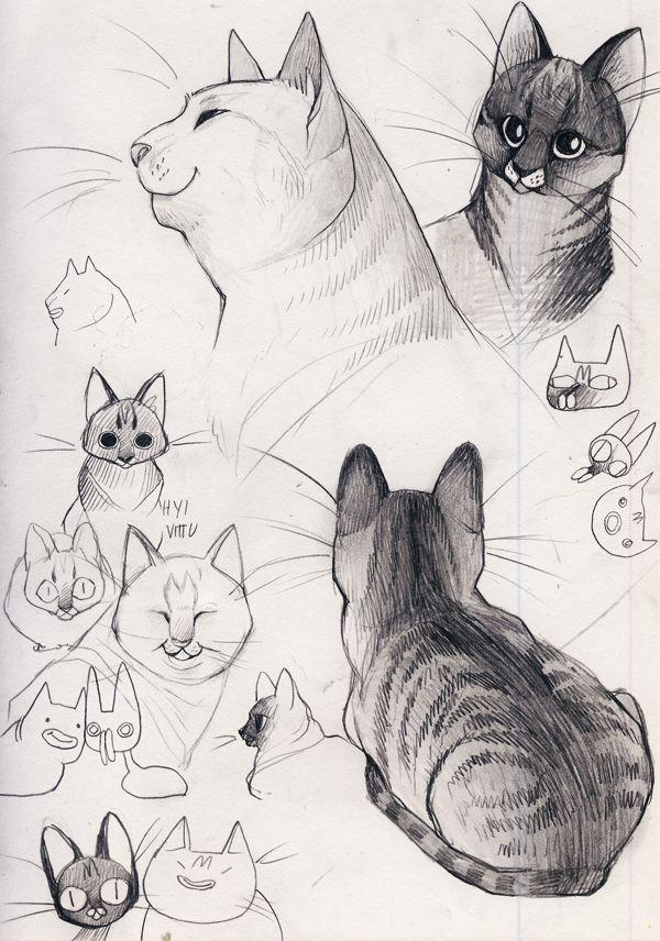 женщине картинки туториалы коты этом альбоме