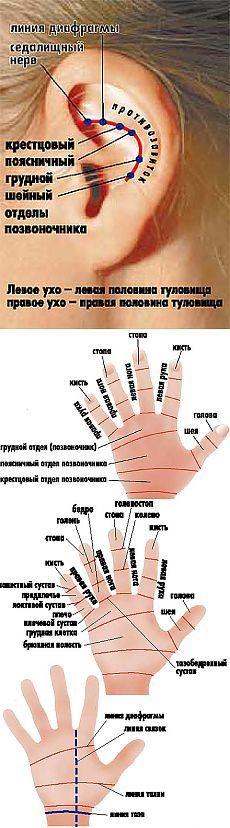 (+1) тема - Гречка - средство от болезней   ВСЕГДА В ФОРМЕ!