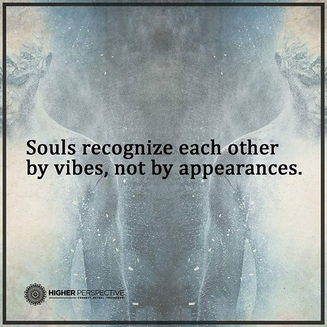 Love Each Other When Two Souls: Souls Recognize Each Other By Vibes, Not Appearances