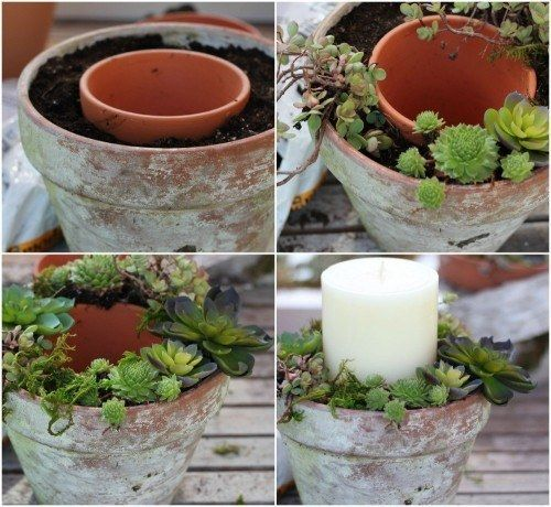 DIY succulent centerpiece.