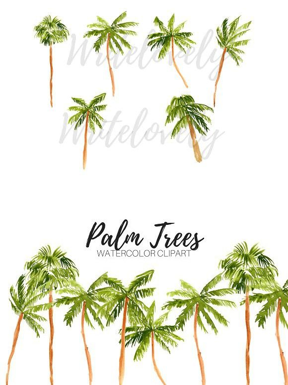 Watercolor Palm Tree Clipart Tree Clipart Clip Art Watercolor