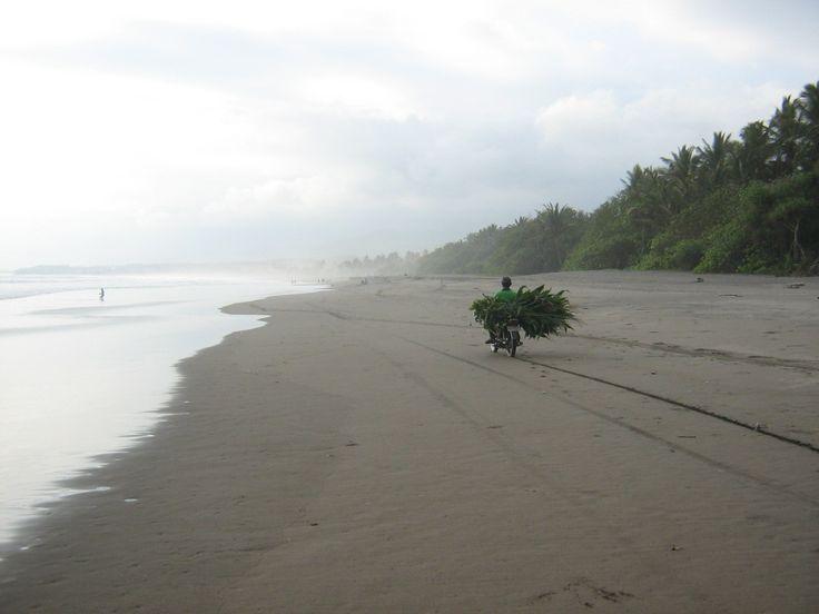 Bali beach delivery