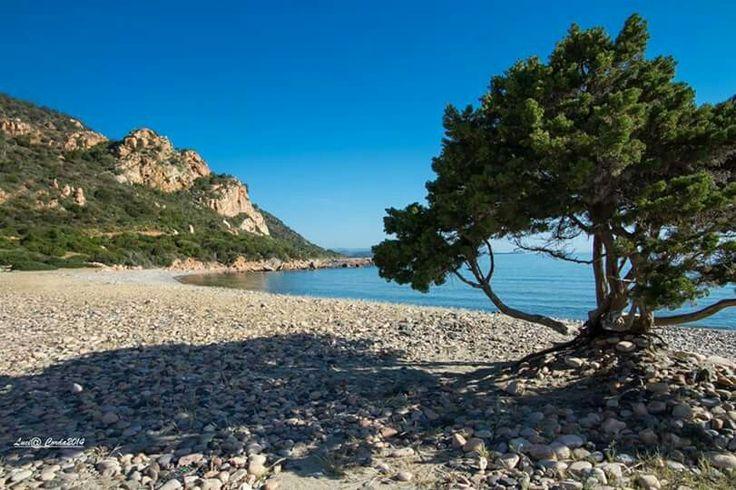 Spiaggia Su Sirboni - Ogliastra