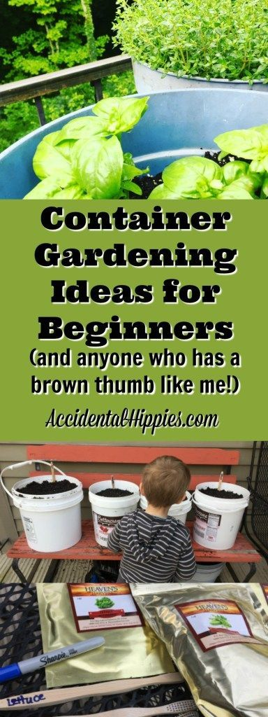 Vegetable Container Gardening Ideas container gardening ideas Zero Waste Seed Markers Free Containers And Buckets Full Of Great Container Gardening