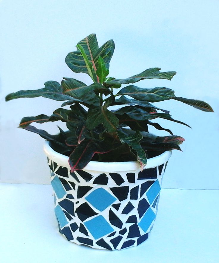 Pot with mosaic. Blue colors