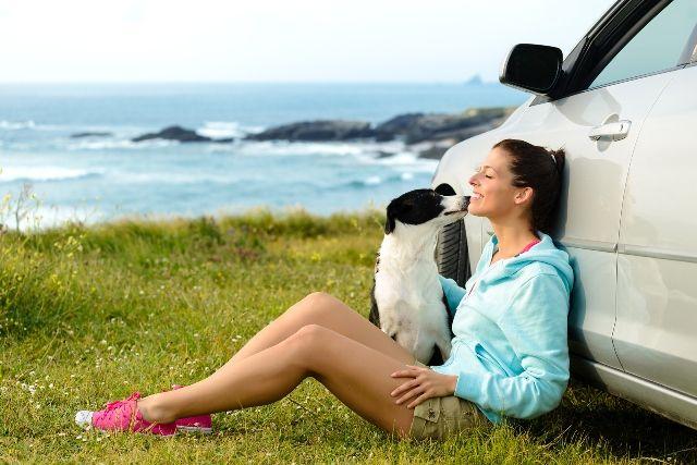 Együtt vagy külön nyaraljunk? Nyaralás előtt az állattartók rendszerint felteszik ezt a kérdést. Többnyire az állat jelleméből vagy fajából adódik a megoldás