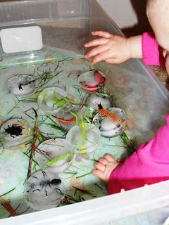 "Frozen minibeast fun ("",) Great idea for getting the children investigating"