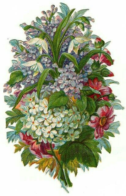 http://www.vintageimages.org/index.php/Flowers/Flowers14