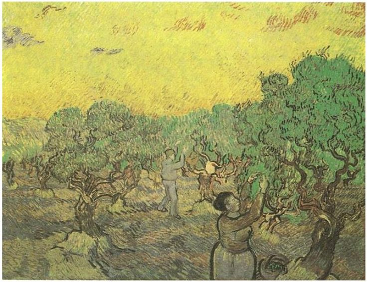 Olive Grove with Picking Figures Vincent van Gogh Painting, Oil on Canvas Saint-Rémy: December, 1889 Kröller-Müller Museum Otterlo, The Netherlands, Europe F: ;587, ;JH: ;1853