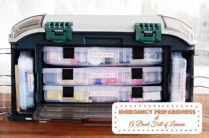 "Emergency Preparedness - Week 3 ""First Aid Kit""   A Bowl Full of Lemons"