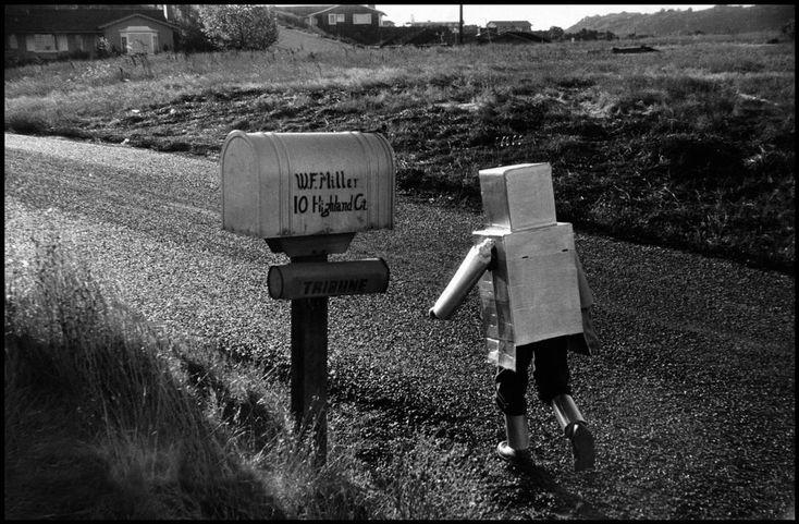 California, Orinda, 1956, Wayne F. Miller. American (1918 - 2013)  Magnum Photos