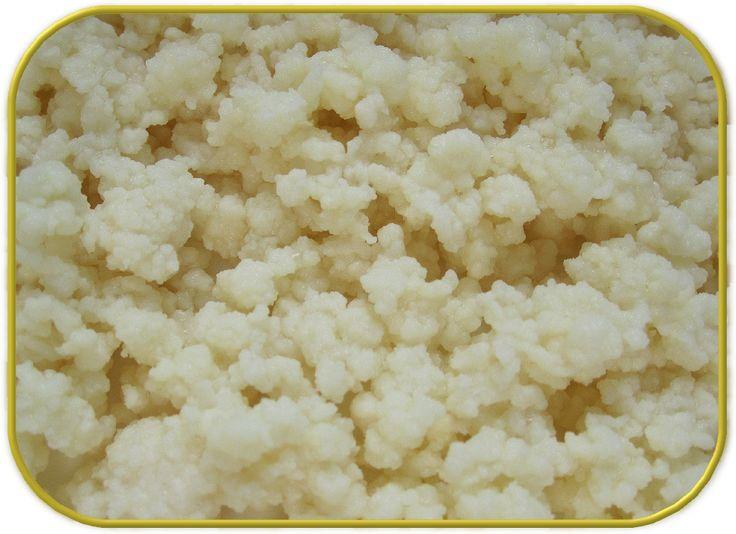 Hay tres tipos de kefir pero el más extendido es este, el de leche. PREPARACION Introducimos en un tarro preferentemente de ...