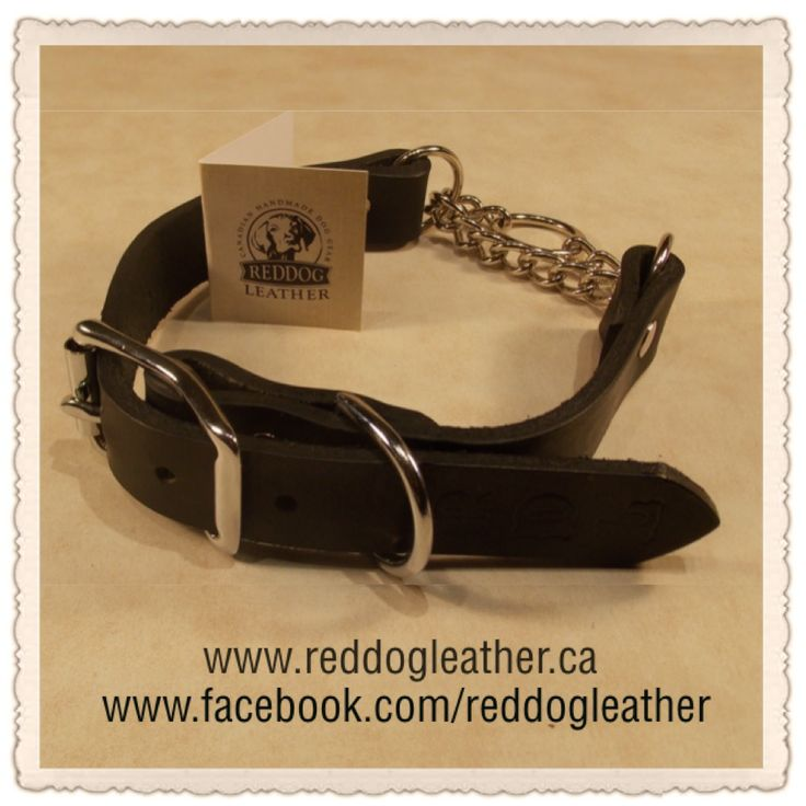"""Red Dog Leather ~ Our Martingale Regular Collars is made using harness leather, with roller buckles, 'D' rings and chrome chains on all leather colors. *NO TAX,  $20 from your RDL martingale purchase is going to FMHR.  ~Sizes & Prices: 3/4"""" & 1""""~ Small 11""""-15""""-- 3/4""""~$50 & 1""""~$55 Med. 14""""-18""""--3/4""""~$55 & 1""""~$60 Large 18""""-22""""--3/4""""~$60 & 1""""~$65 X Lg. 22""""-26""""-- 3/4""""~$65 & 1~$70  *Available in Brown & Black. *Shipping available  *PayPal payments to reddogleather@yahoo.ca"""