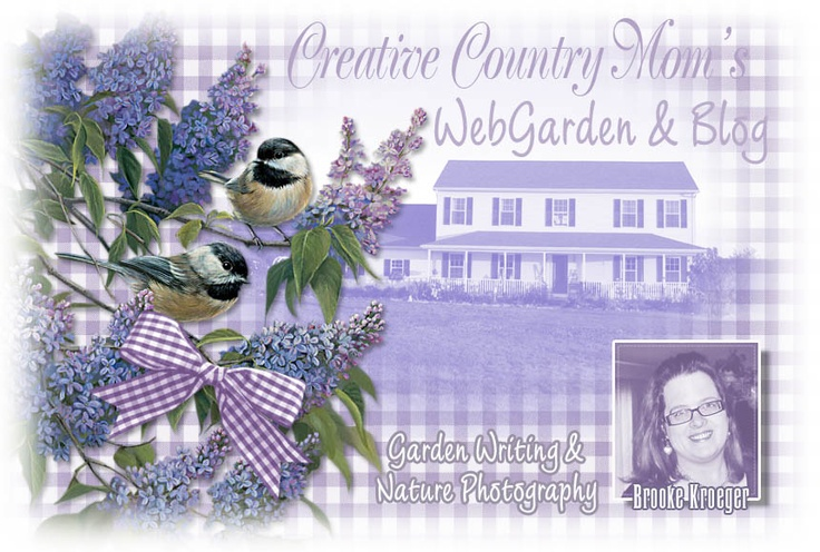 One of my favorite garden blogs. Take a look at Brooke's lovely garden! http://creativecountrymom.blogspot.com/: Mom Gardens, Creative Gardens, Creative Country, Brooks Kroeger, Gardens Outdoor Yard Farms, Gardens Blog, Mom Webgarden, Country Mom, Inspiration Blog