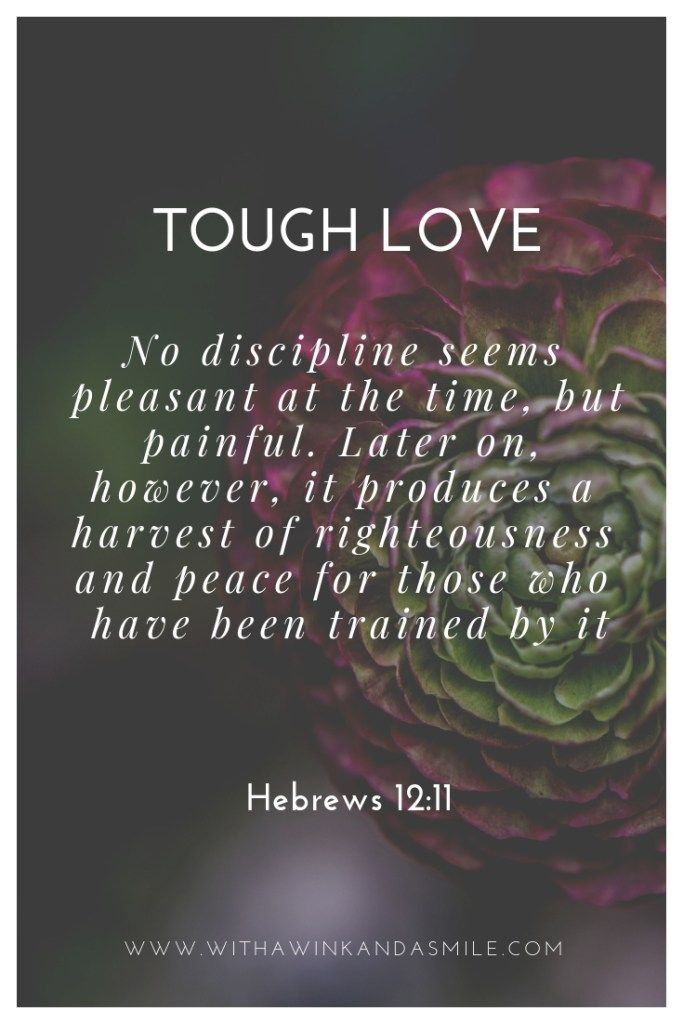 Tough Love Strong Willed Child Hebrews 12 11 Tough Love