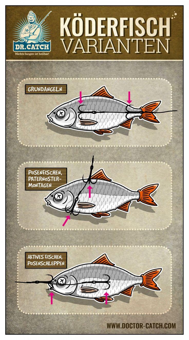 Köderfischmontagen zum Angeln auf Hecht