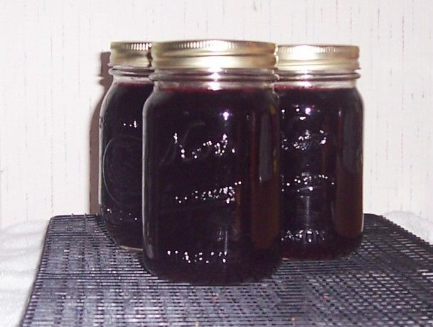 Dewberries grow wild in my part of the country.  They are very similar to blackberries, but larger and sweeter.  This is the my DHs favorite jelly.  You can use this same recipe using blackberries or boysenberries.  The times listed in the recipe DO NOT INCLUDE the straining time.