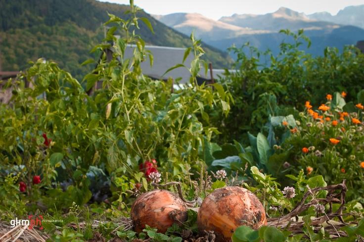 los huertos están llegando a su fin en la Val d'Aran, http://gorkamartinez.blogspot.com.es/2012/10/277366fotos.html