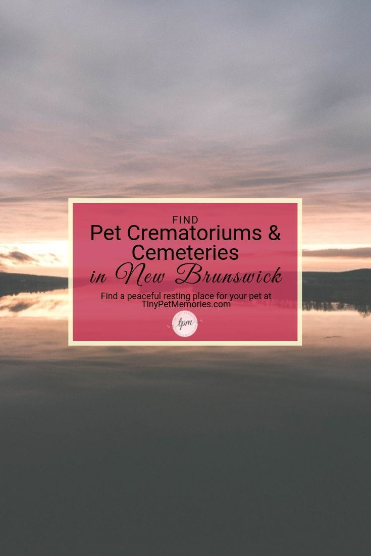 Looking For A Peaceful Way To Lay Your Petlove To Rest Find Petcemetery Or Petcrematorium Newbrunswick On Tinypetm Cemeteries New Brunswick Pet Memorials