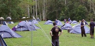 Purple field of accomodation