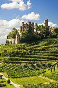 Der Ortenauer Weinwanderwg geht direkt oberhalb der Ortenburg vorbei, einfach herrlich im Herbst. Eine schöne aber anpsruchsvolle Teilstrecke führt von Baden-Baden nach Neusatz.  http://www.hotel-am-sophienpark.de/