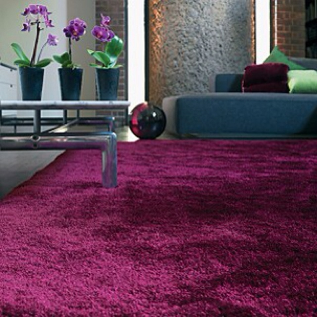 pinot carpet