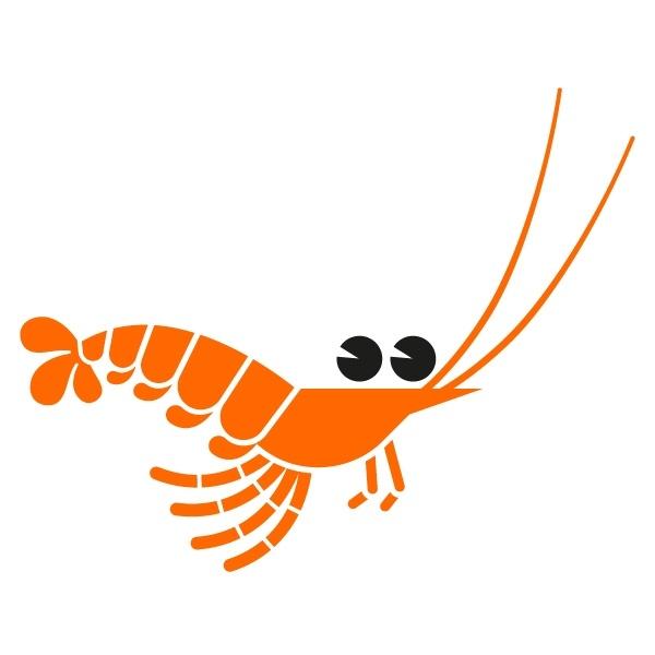 49 Best Images About Shrimp Hole On Pinterest